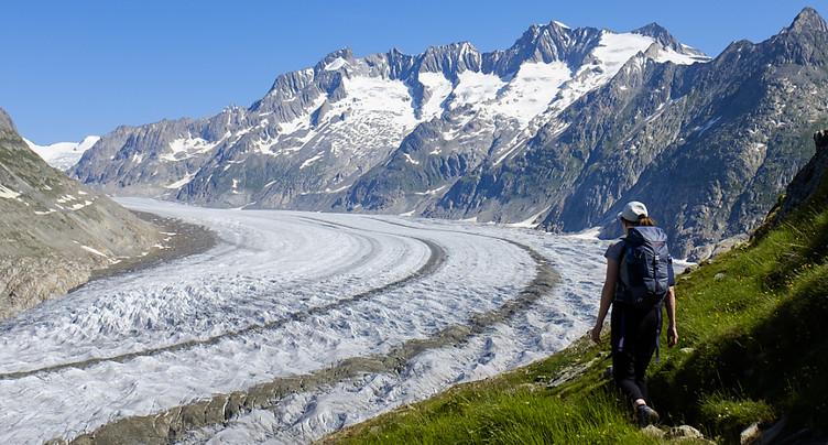 Des mesures pourraient encore sauver en partie les grands glaciers