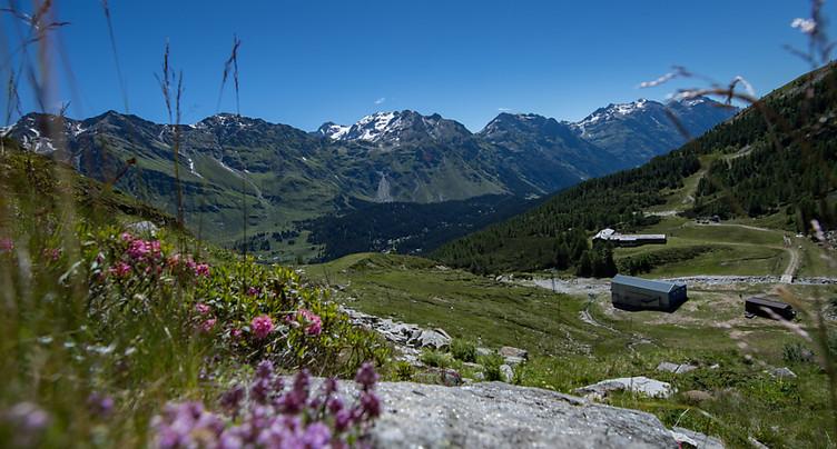 Période estivale positive pour le tourisme suisse