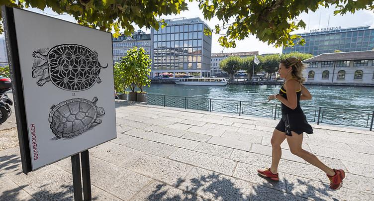 La Bibliothèque de Genève rend hommage à Nicolas Bouvier