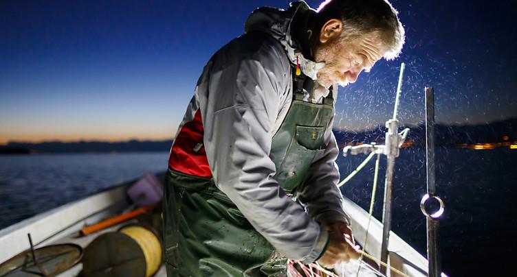La pêche dans une mauvaise phase sur le lac de Neuchâtel