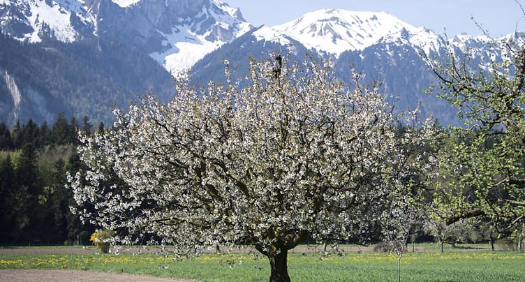 Airbnb se rapproche du million d'hôtes annuels en Suisse