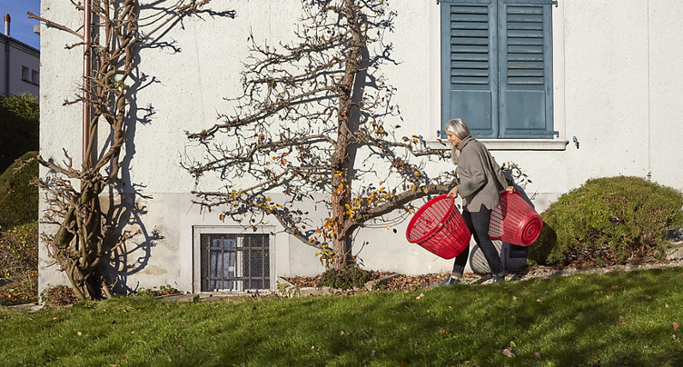 Plus de la moitié des seniors suisses possèdent leur logement