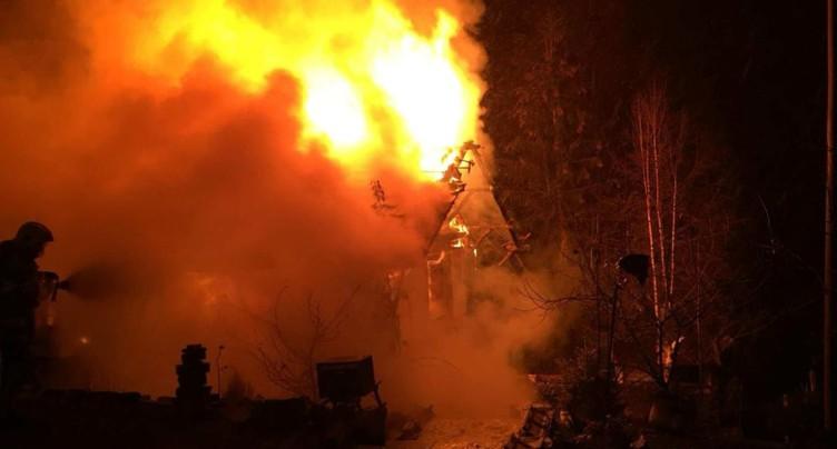 Un chien et plusieurs perroquets meurent dans les flammes