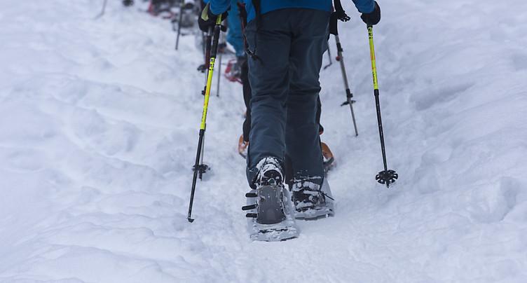 Randonner en raquettes à neige en respectant la faune