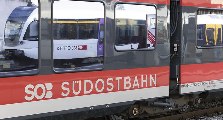 Les CFF louent des trains à la Südostbahn