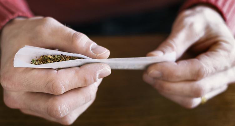 Possession de cannabis: mineurs à la même enseigne que les adultes