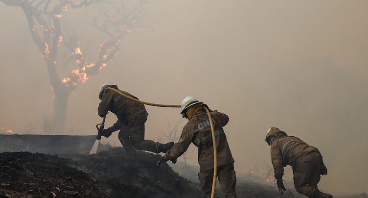 Plus de 1000 pompiers luttent contre des feux de forêt au Portugal