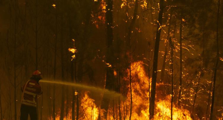 Attisés par les vents, les incendies ont repris au Portugal