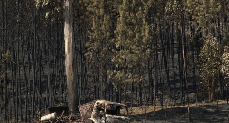 Les pompiers viennent à bout d'un gros feu de forêt au Portugal