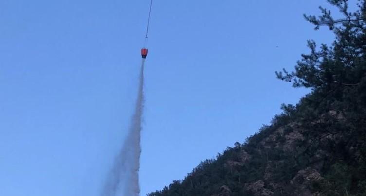 Deux ados mettent involontairement le feu à la forêt à Riddes