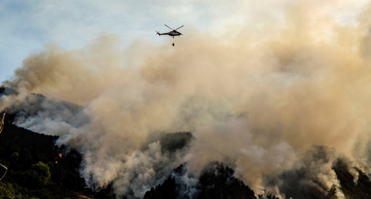 Les pompiers progressent face à l'incendie de la Grande Canarie