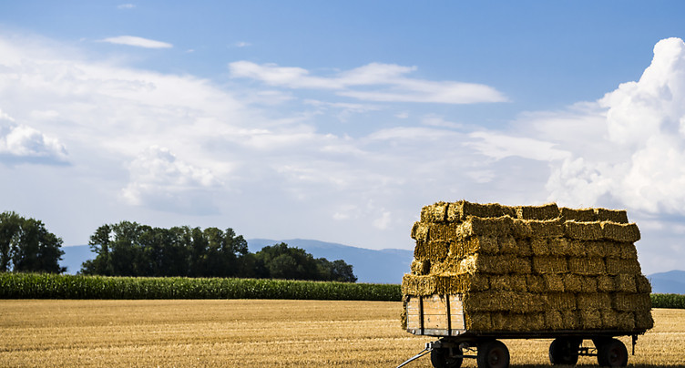 Le Conseil fédéral revoit en partie sa politique agricole PA22+