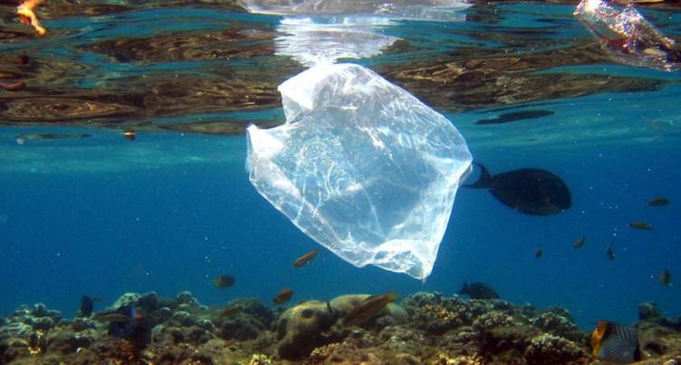 Microplastiques dans l'eau: risques encore faibles pour la santé