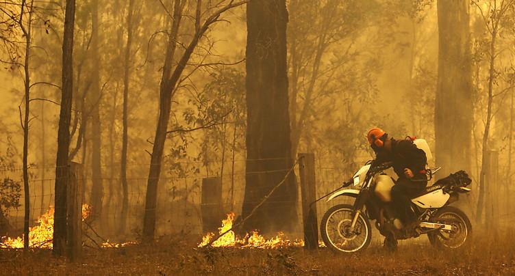 Feux: état d'urgence déclaré sur la côte est de l'Australie