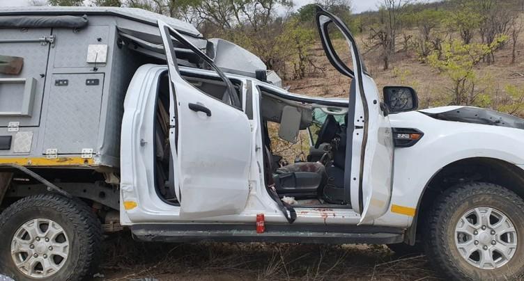 Collision fatale avec une girafe pour un Suisse en Afrique du Sud