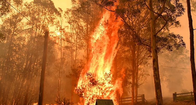 Des incendies fusionnent en un « mégafeu » au nord de Sydney