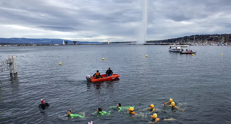 Encore davantage de nageurs à Genève pour la Coupe de Noël