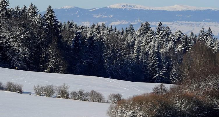 Lausanne: le parc naturel du Jorat prend forme