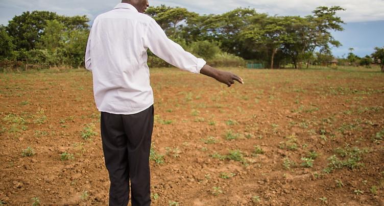 La famine menace 45 millions de personnes en Afrique australe
