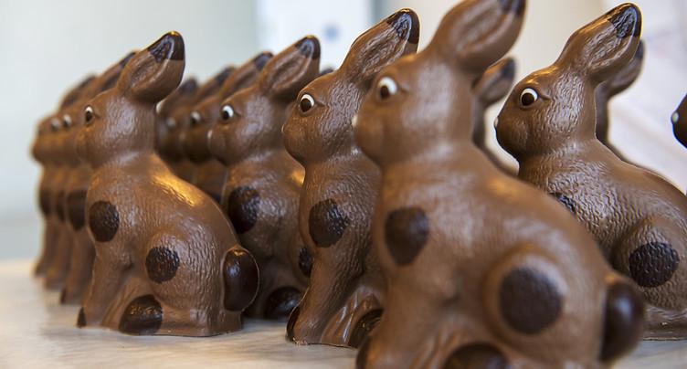 L'OFSP veut ramener le lapin de Pâques chez lui en toute sécurité