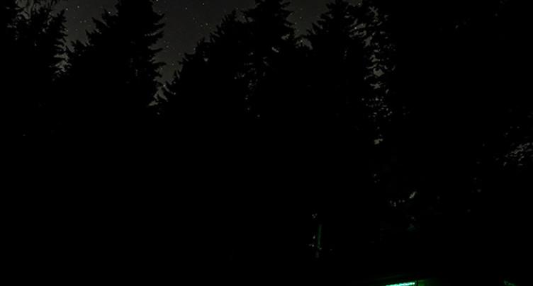 « Dans la forêt » emmène le spectateur de nuit dans les bois du Jorat