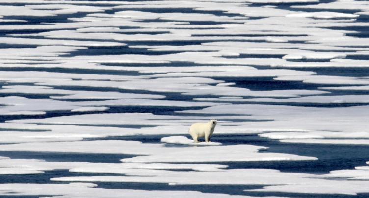 En Arctique, la banquise à son niveau le plus faible pour octobre