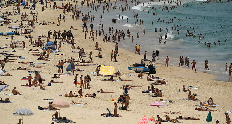 Sydney enregistre sa nuit de novembre la plus chaude