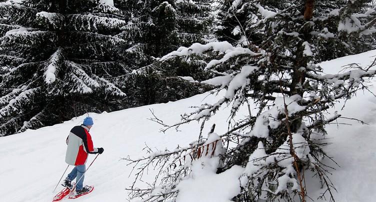 Sports de neige: les amateurs invités à respecter la faune sauvage