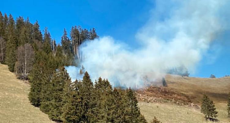 La forêt brûle au-dessus de Crésuz (FR)