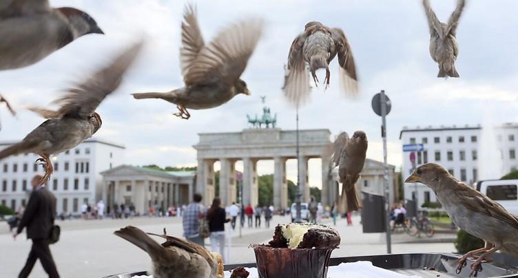 L'Allemagne assouplit les restrictions pour les personnes vaccinées