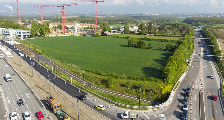 Une zone agricole à Bernex déclassée pour y construire des écoles