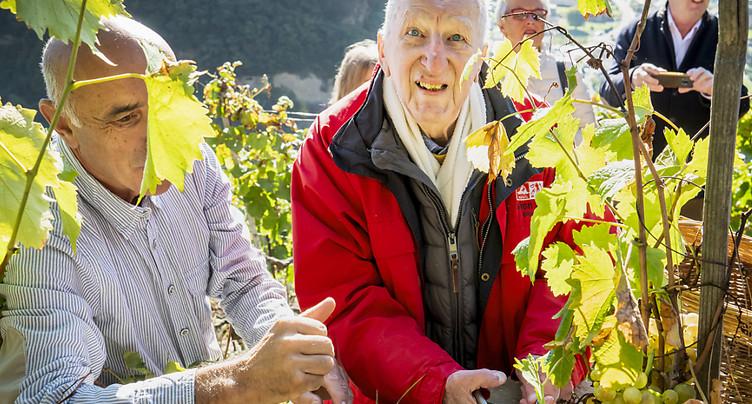 A Saillon (VS), Pascal Thurre vendange « sa » Vigne à Farinet