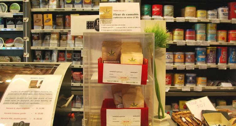 Le cannabis en vente libre au Parlement