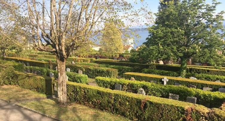 Le cimetière de Beauregard bientôt rafraîchi