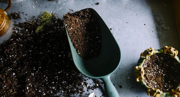 Engrais, tomates, hannetons... Les Jardinières s'occupent de tout !