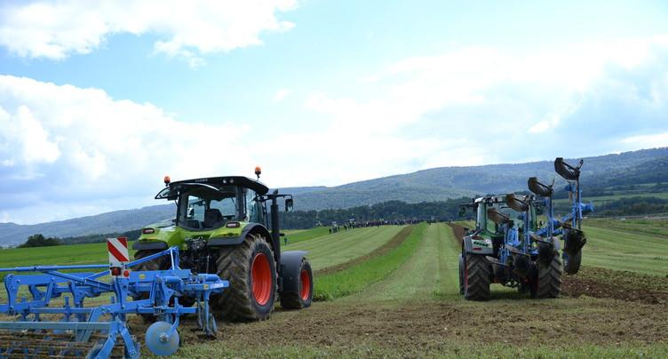 Se passer des herbicides tout en maintenant le rendement