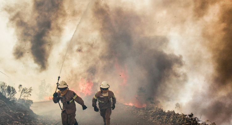 L'association Portugal on Fire pour venir en aide aux sinistrés