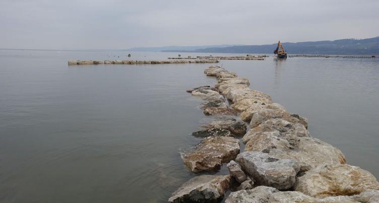 Des îlots cinq étoiles pour les oiseaux migrateurs