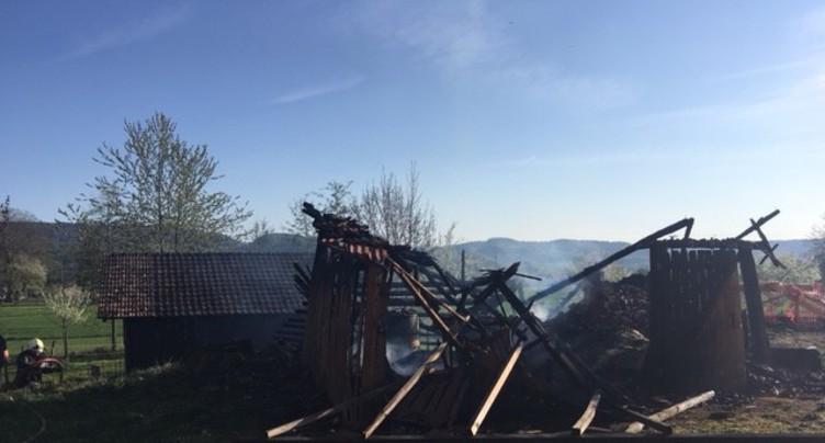 Un cabanon part en fumée à Miécourt