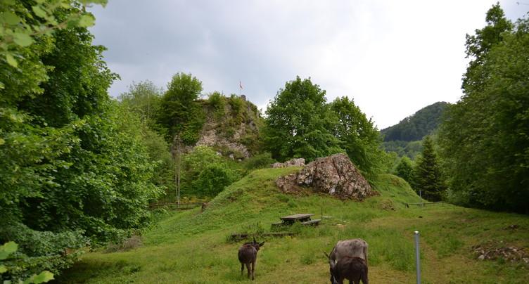 Le château d'Asuel reprend vie