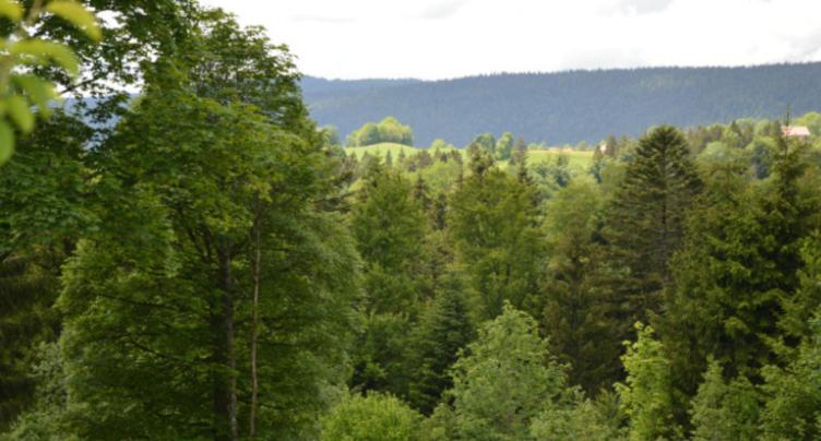 Val Forêt reçoit 100'000 francs de l'Aide Suisse aux Montagnards