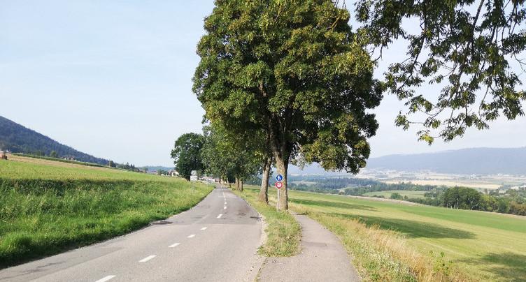 Travaux sur la route entre Saules et le giratoire de la Côtière