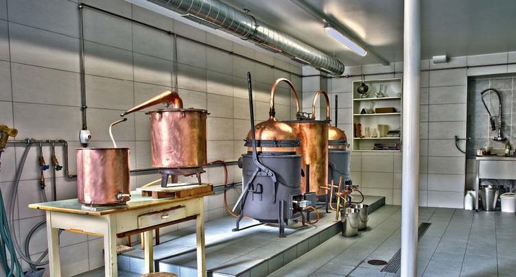 L'absinthe suisse dans sa plus pure tradition