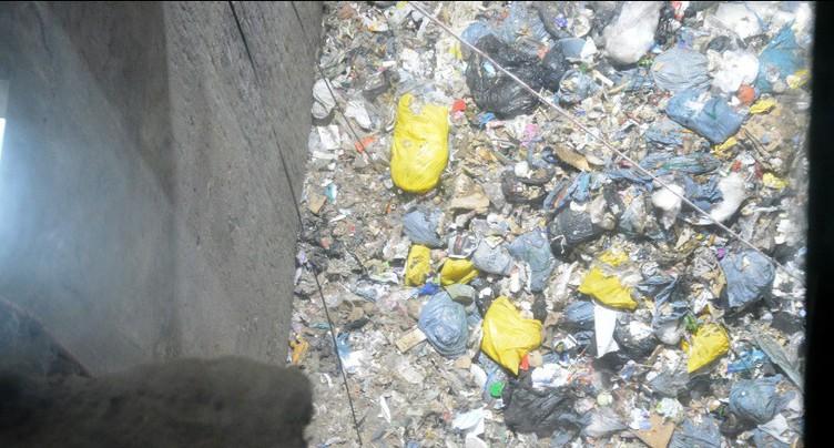 Dans le secret des poubelles