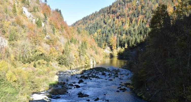 Démission du directeur du Parc du Doubs