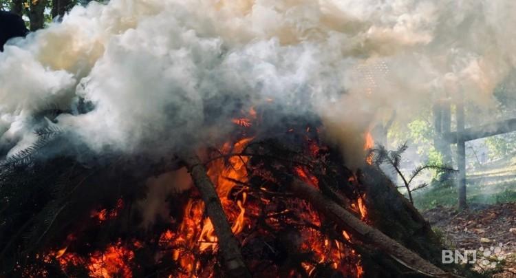 Prudence avec les feux en forêt