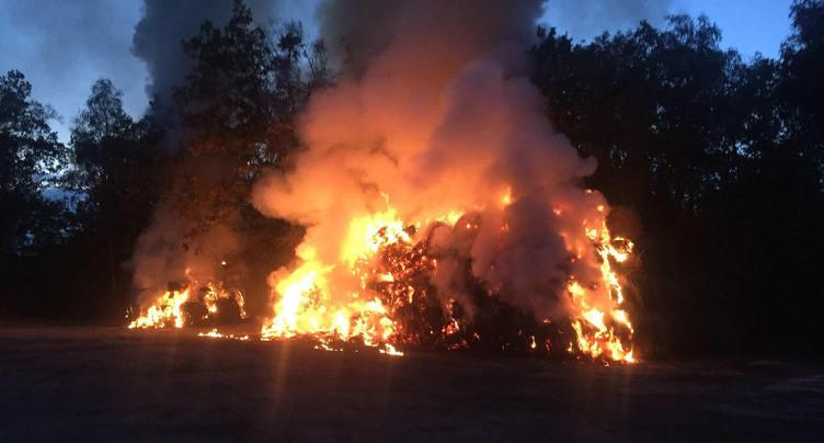Incendie à La Grande Cariçaie