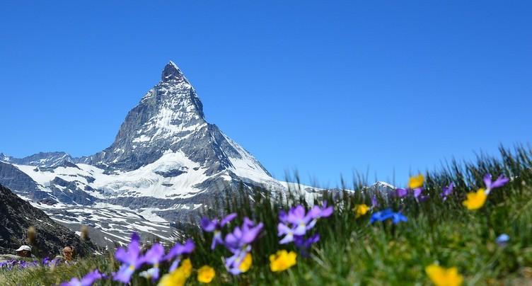 Les crétins des Alpes ont désormais leur histoire !