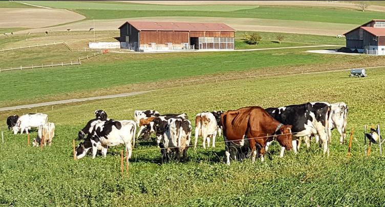 L'agriculture glisse vers le numérique