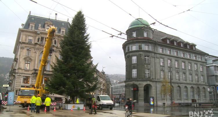Le sapin d'ESB reviendra pour la 15e fois à Bienne
